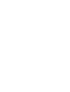Moms For America Ghosted Logo